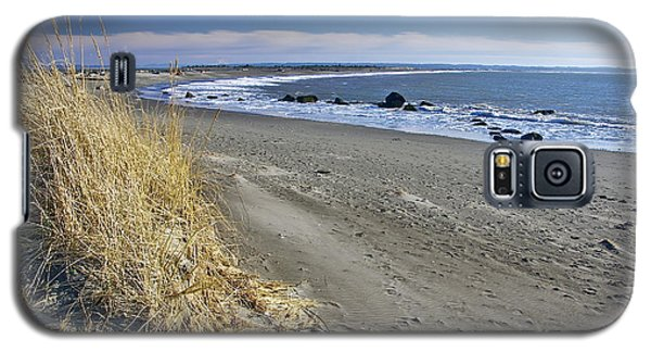 Damon Point Galaxy S5 Case by Sean Griffin