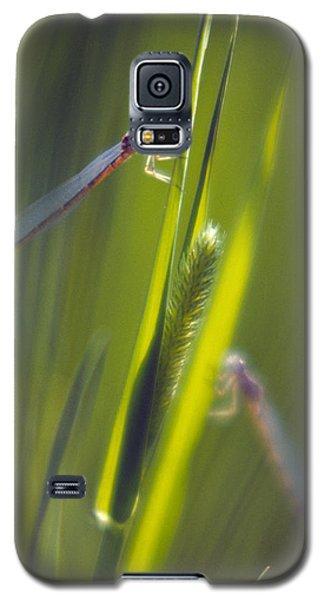 Damselflies Galaxy S5 Case