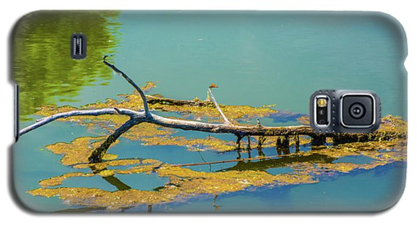 Damselfly On A Lake Galaxy S5 Case