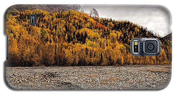 Dan Creek Color Galaxy S5 Case