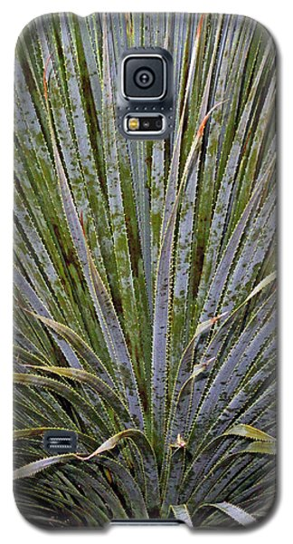Dana Point Swords Galaxy S5 Case