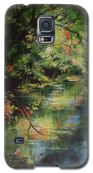 Dance Of Color And Light Galaxy S5 Case