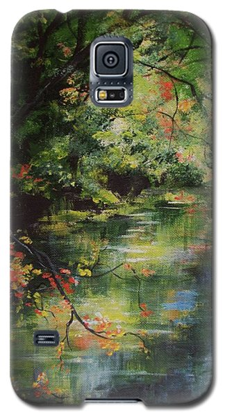 Dance Of Color And Light Galaxy S5 Case by Mary Wolf