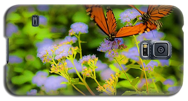 Galaxy S5 Case featuring the photograph Dance Of The Butterflies by Edward Peterson