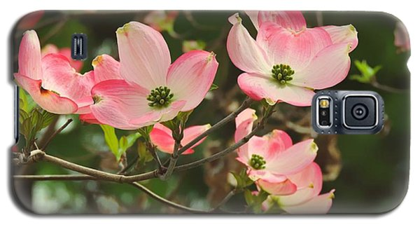 Dance Of The Dogwood Galaxy S5 Case