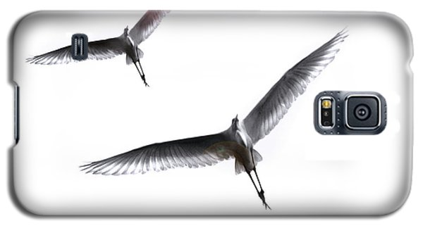 Galaxy S5 Case featuring the photograph Dance Of The Egrets by Marion Cullen