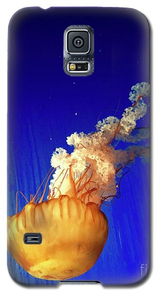Dance Of The Jelly Galaxy S5 Case by Beth Saffer