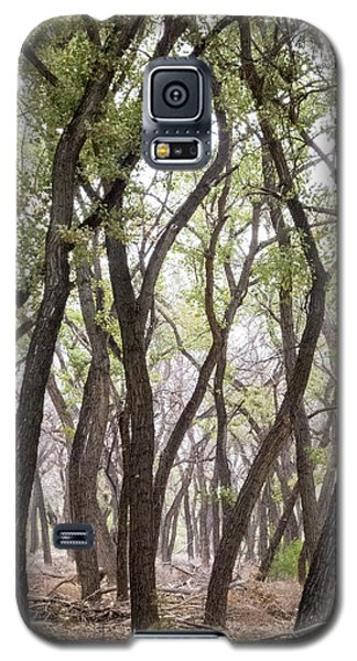 Dance Of The Trees Galaxy S5 Case