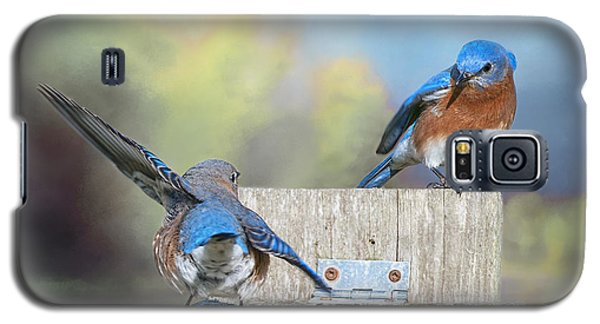 Galaxy S5 Case featuring the photograph Dancing Bluebirds by Bonnie Barry