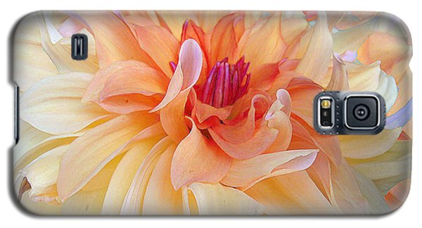 Dancing Dahlia Galaxy S5 Case