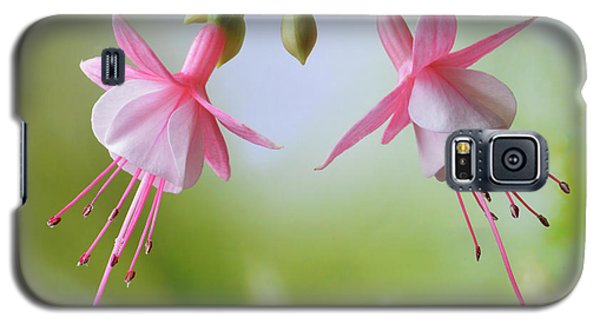 Galaxy S5 Case featuring the photograph Dancing Fuchsia by Terence Davis