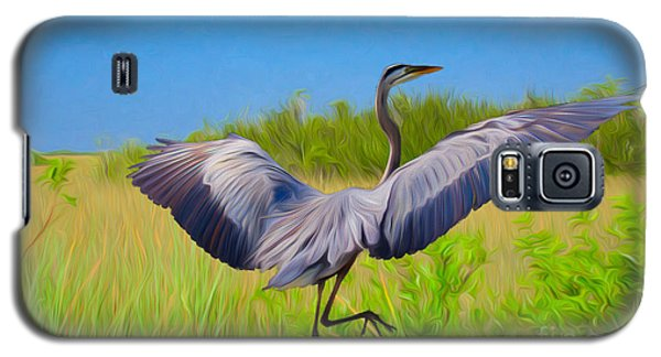 Dancing In The Glades Galaxy S5 Case