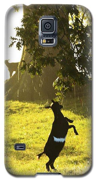 Dancing In The Rain Galaxy S5 Case by Thomas R Fletcher