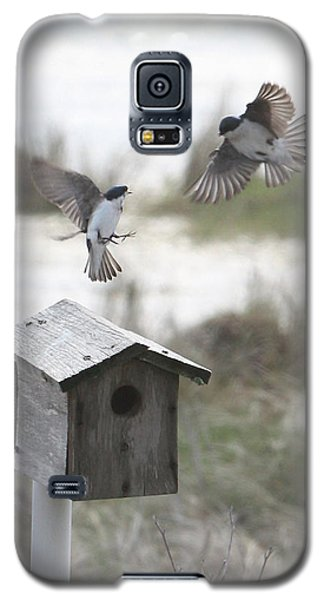 Dancing Tree Swallows Galaxy S5 Case