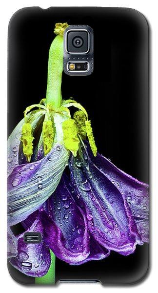 Dancing Tulip 2 Galaxy S5 Case
