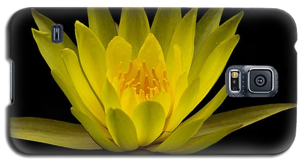 Dancing Yellow Lotus Galaxy S5 Case