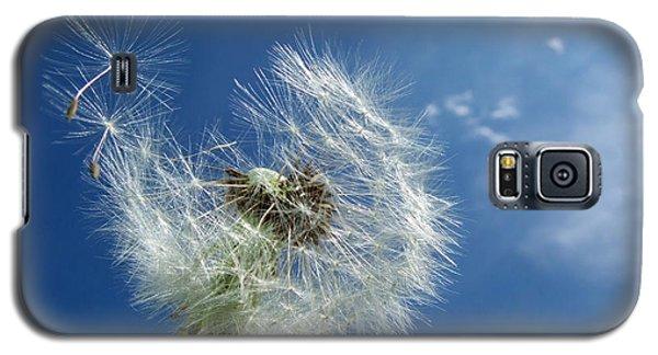 Dandelion And Blue Sky Galaxy S5 Case