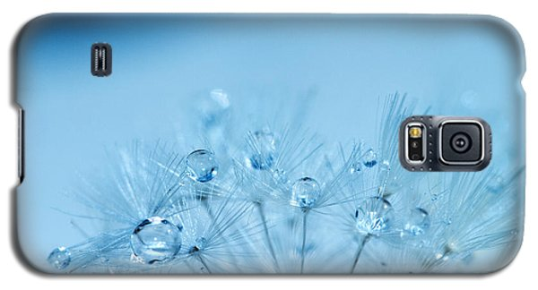 Dandelion Bouquet Galaxy S5 Case by Rebecca Cozart