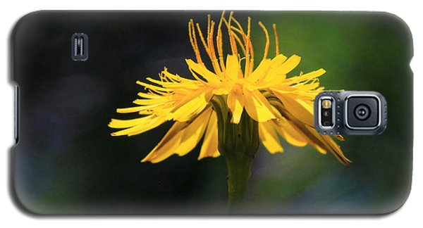 Dandelion Dance Galaxy S5 Case