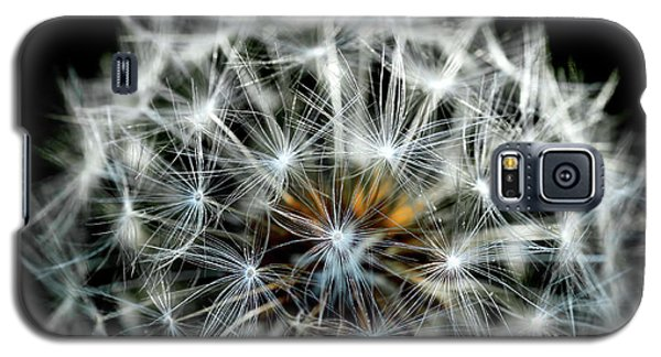 Dandelion Details Galaxy S5 Case
