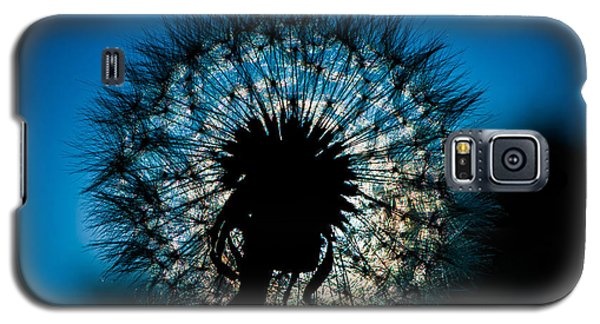 Galaxy S5 Case featuring the photograph Dandelion Dream by Jason Moynihan