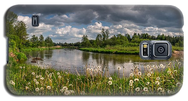 Dandelion Field On The River Bank Galaxy S5 Case