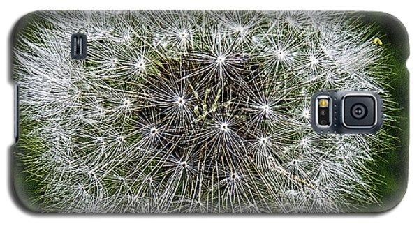 Dandelion Fluff Galaxy S5 Case