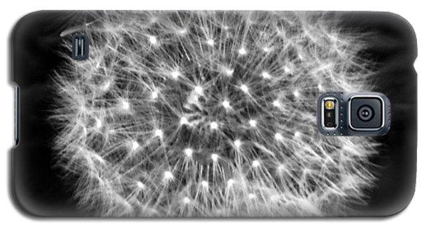Dandelion Fuzz Galaxy S5 Case
