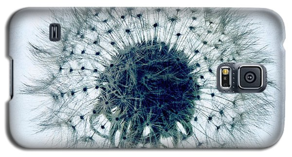 Dandelion In Blue Galaxy S5 Case by Tamyra Ayles