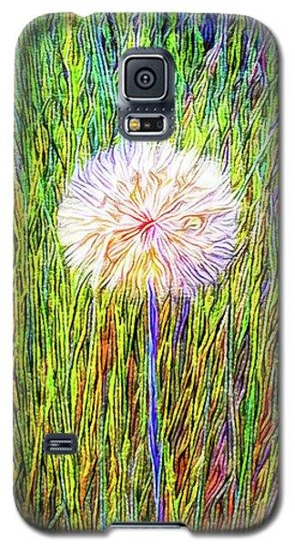 Dandelion In Glory Galaxy S5 Case by Joel Bruce Wallach