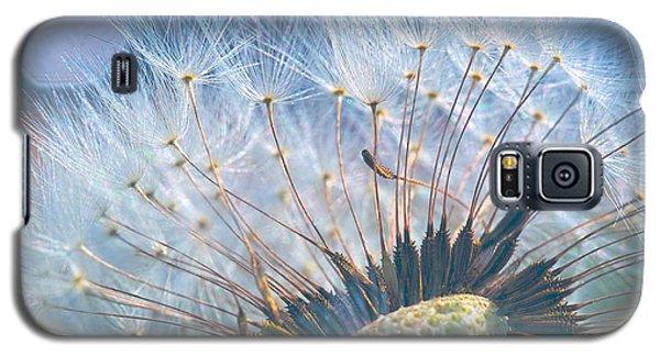 Dandelion In Light Galaxy S5 Case
