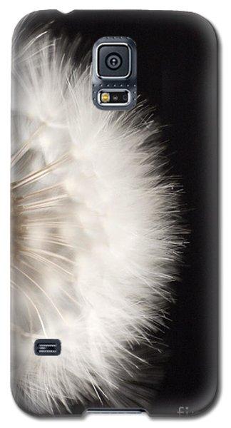 Dandelion In Macro 4 Galaxy S5 Case