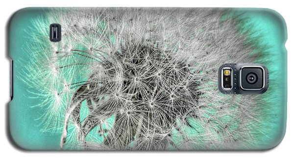 Dandelion In Turquoise Galaxy S5 Case by Tamyra Ayles