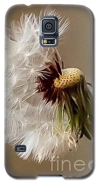 Dandelion Galaxy S5 Case