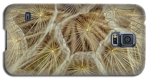 Dandelion Particles Galaxy S5 Case