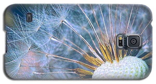 Dandelion Plumes Galaxy S5 Case