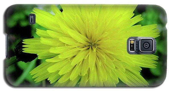 Dandelion Symmetry Galaxy S5 Case