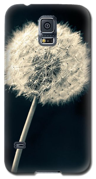 Dandelion Galaxy S5 Case