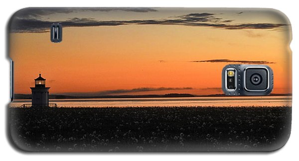 Dandelion Wishes Galaxy S5 Case