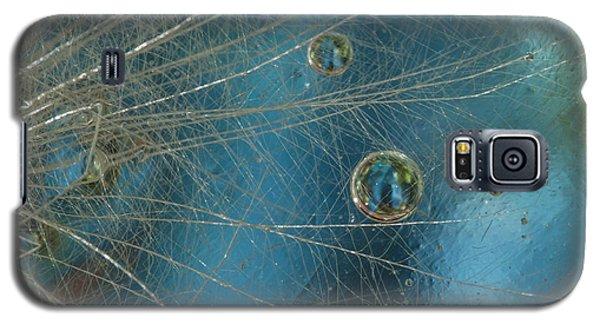 Dandy Drops Galaxy S5 Case
