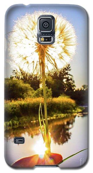 Dandy Lion Galaxy S5 Case