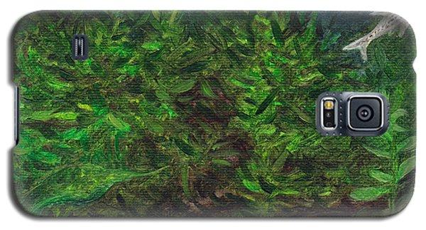 Danios Galaxy S5 Case