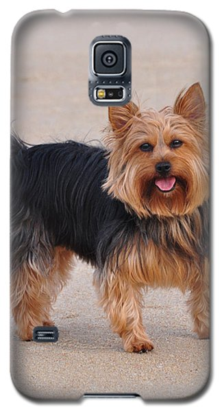 Dapper Dog Galaxy S5 Case