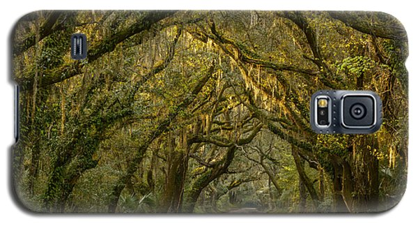 Dappled Morning Galaxy S5 Case by Mike Lang
