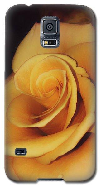 Dark And Golden Galaxy S5 Case