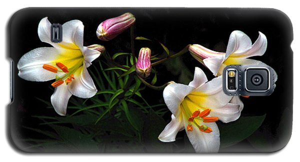 Galaxy S5 Case featuring the photograph Dark Day Bright Lilies by Byron Varvarigos