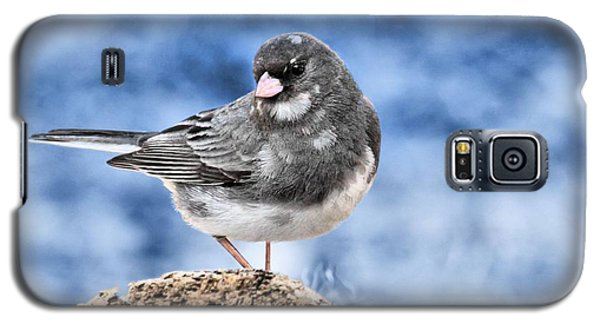 Galaxy S5 Case featuring the photograph Dark-eyed Junco by Debbie Stahre
