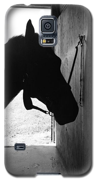Dark Horse Galaxy S5 Case