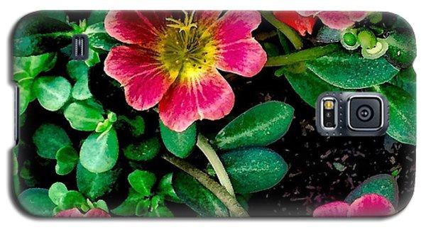 Dark Pink Purselane Flowers Galaxy S5 Case