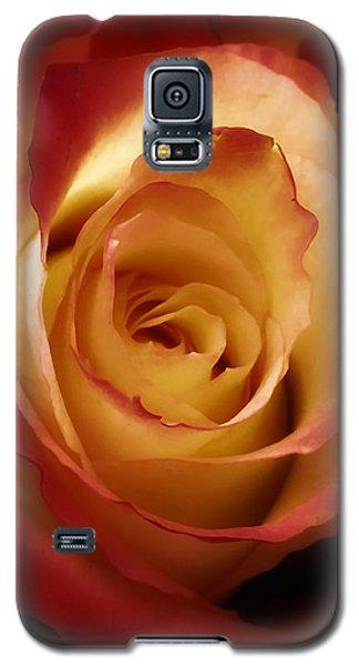 Dark Rose Galaxy S5 Case